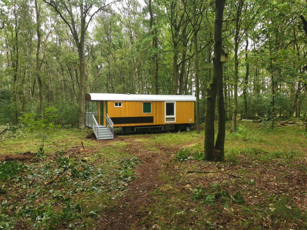 Wald-KiTa Tespe geht in Betrieb